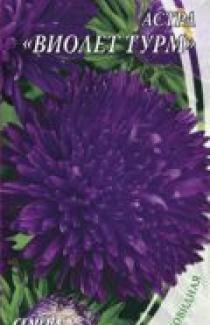 Семена Астра  Виолет Турм  0,3г