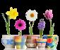 Семена цветов, деревьев и комнатных растений