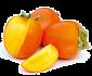 Саженцы экзотических фруктов