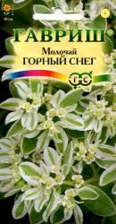 Семена Молочай Горный Снег окаймленный 0,5 г