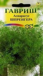 Семена  Аспарагус  Шпренгера 5шт