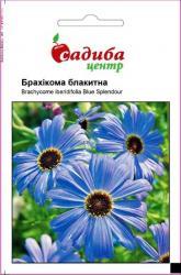 Семена Брахикома голубая 0,1г (Hem Zaden, Голландия)