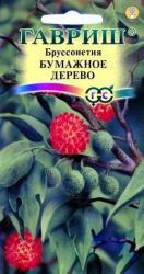 Семена Бруссонетия  Бумажное дерево 3шт