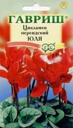 Семена  Цикламен  Персидский  Юля 3шт