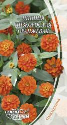 Семена Циннии низкорослой оранжевой (0,5г)