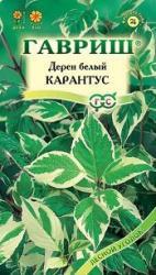 Семена Дерен Белый Карантус 0,1г