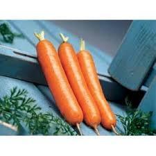 Семена моркови Дордонь F1 5000шт