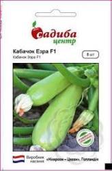 Семена кабачка Эзра F1 5шт (Nickerson-Zwaan  Голландия)