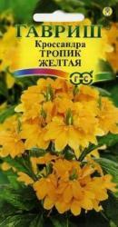 Семена Кроссандра Тропик желтая 3шт (Гавриш)
