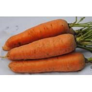 Семена моркови Курода 0,5кг