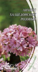 Семена Лихнис Халцедонский Розовый 0,3г