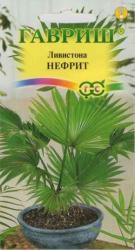 Семена Ливистона Нефрит 3шт (Гавриш)