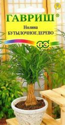 Семена Нолина  Бутылочное  дерево  3 шт