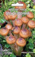 Семена мицелий грибов Опенок осенний 10шт