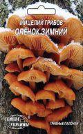Семена мицелий грибов Опенок зимний 5шт