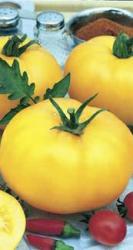Семена томата Лимонный гигант 0,2г