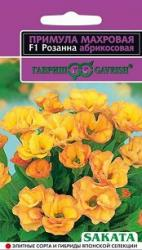 Семена Примула Махровая Розанна Абрикосовая  5шт