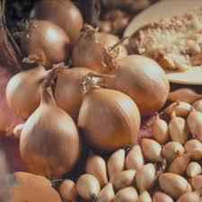 Семена озимого лука-севка Шекспир 1кг