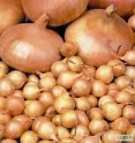 Семена озимого лука-севка Штутти 1кг