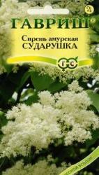 Семена  Сирень амурская Сударушка 0,1г