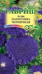 Семена Астры Пампушка черничная (0,3г)