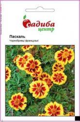 Семена Бархатцев Паскаль (0,2г)
