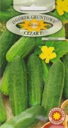 Семена огурца  Цезарь F1 5г