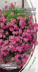 Семена Вербены ампельной розовой (0,1г)