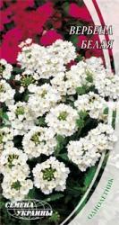 Семена Вербены белой (0,1г)
