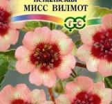 Семена Лапчатки непальской Мисс Вильмотт 0,02 г