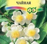 Семена камелии китайской Чайная ТМ «Гавриш» (3шт)