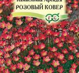 Семена Камнеломки Арендса Розовый ковер 0,01г