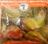 Семена свеклы кормовой Рекорд поли красная 1кг (Польша)