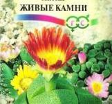 """Семена литопса живой камень МТ """"Гавриш"""" 5 шт."""