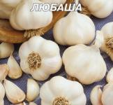 Семена чеснока озимого Любаша 10г
