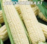 Семена кукурузы сахарной Белоснежка 20г