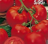 Семена томата Волгоградский  5/95 0,2г Семена Украины