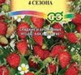 Семена земляники Четыре сезона 0,03г (Гавриш)