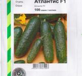 Семена огурца Атлантис 100шт (Bejo Голландия)