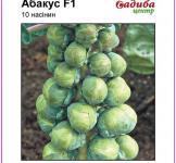 Семена капусты брюссельской Абакус F1 10шт (Syngenta Голландия)