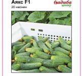 Семена огурца Аякс F1 20шт (Nunhems Голландия)