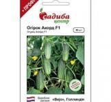 Семена огурца Аккорд F1 50шт (Bejo Голландия)
