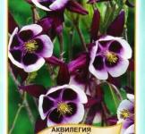 Семена Аквилегия Черный кардинал 0,1г (Legutko Польша)
