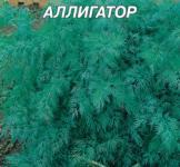 Семена укропа Аллигатор 20г