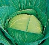 Семена капусты белокочанной Амагер 10г