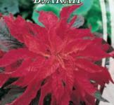 Семена Амарант двухцветный Вулкан 0,3г