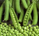 Семена гороха Амброзия 5кг
