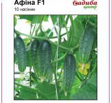Семена огурца Афина F1 10шт (Nunhems Голландия)