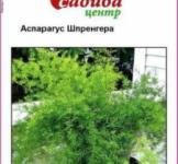 Семена  Аспарагус  Шпренгера 0,3г