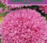 Семена Астры Баллон розовый 0,1г (Гавриш)